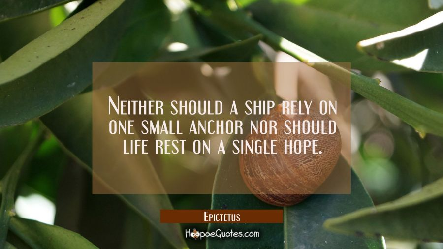 Neither should a ship rely on one small anchor nor should life rest on a single hope. Epictetus Quotes