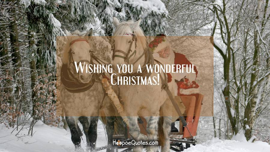 Wishing you a wonderful Christmas! Christmas Quotes