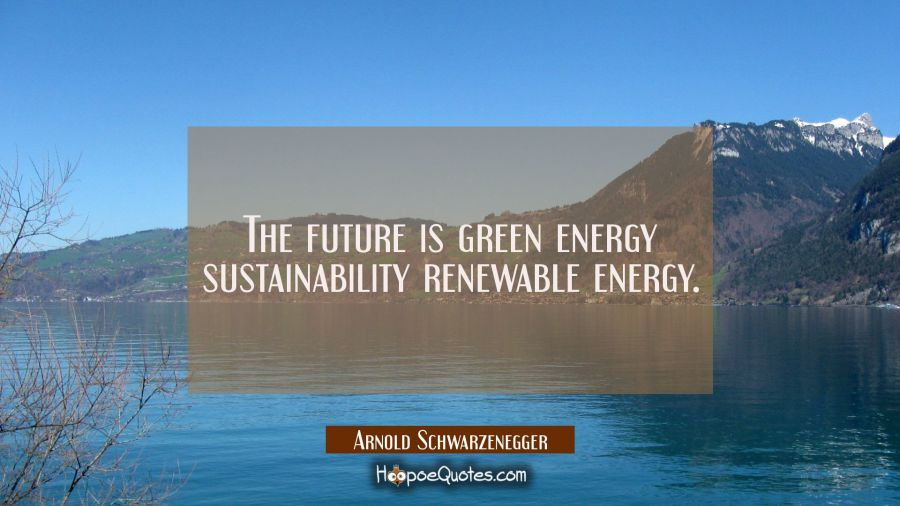 The future is green energy sustainability renewable energy. Arnold Schwarzenegger Quotes