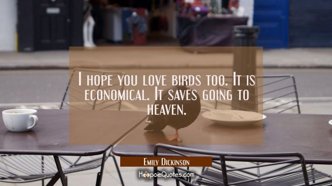 I hope you love birds too. It is economical. It saves going to heaven.