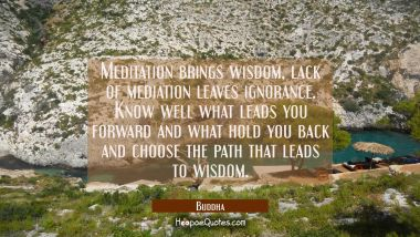 Meditation brings wisdom, lack of mediation leaves ignorance. Know well what leads you forward and