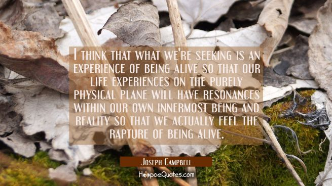 I think that what we're seeking is an experience of being alive so that our life experiences on the