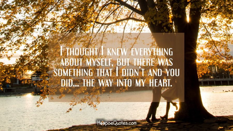 I thought I knew everything about myself there was something that I didn't and you did… the way into my heart. I Love You Quotes