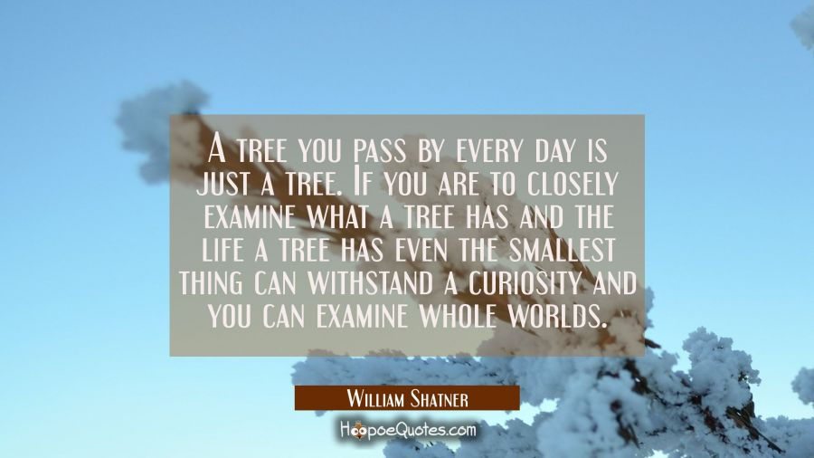 A tree you pass by every day is just a tree. If you are to closely examine what a tree has and the William Shatner Quotes