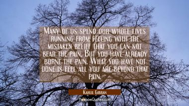 Many of us spend our whole lives running from feeling with the mistaken belief that you can not bear the pain. But you have already borne the pain. What you have not done is feel all you are beyond that pain. Kahlil Gibran Quotes