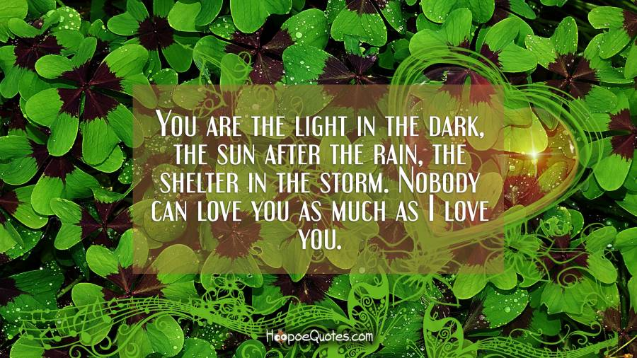 You are the light in the dark, the sun after the rain, the shelter in the storm. Nobody can love you as much as I love you. I Love You Quotes