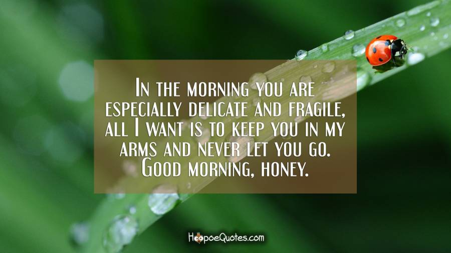 In the morning you are especially delicate and fragile, all I want is to keep you in my arms and never let you go. Good morning, honey. Good Morning Quotes