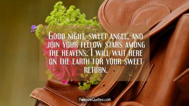 Good night, sweet angel, and join your fellow stars among the heavens. I will wait here on the earth for your sweet return. Good Night Quotes