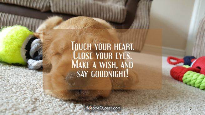 Touch your heart. Close your eyes. Make a wish, and say goodnight!