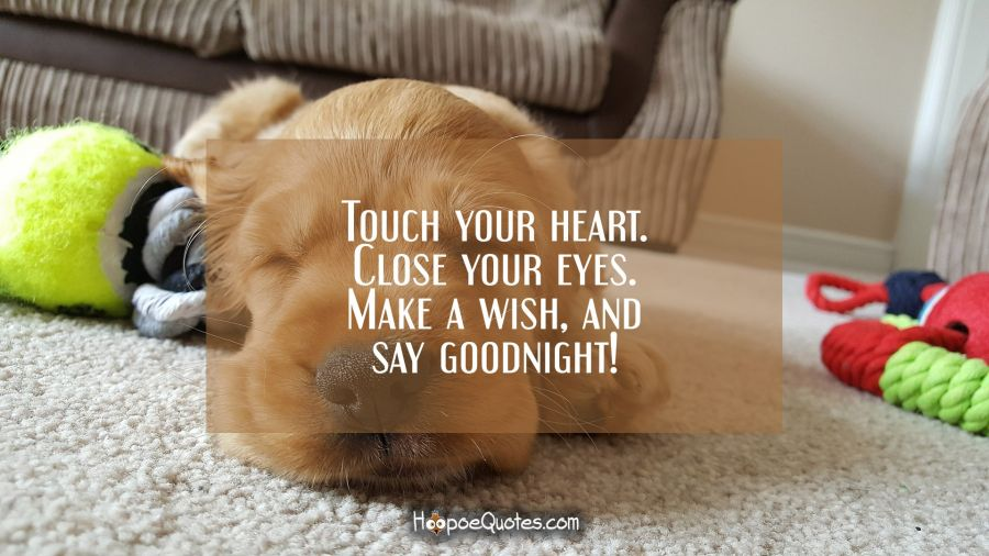 Touch your heart. Close your eyes. Make a wish, and say goodnight! Good Night Quotes