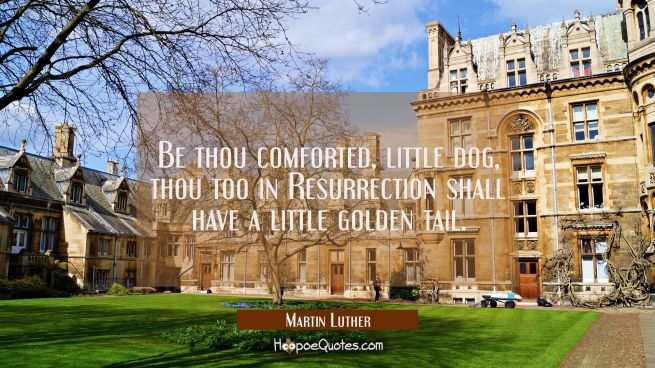 Be thou comforted little dog Thou too in Resurrection shall have a little golden tail.