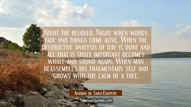 Night the beloved. Night when words fade and things come alive. When the destructive analysis of da