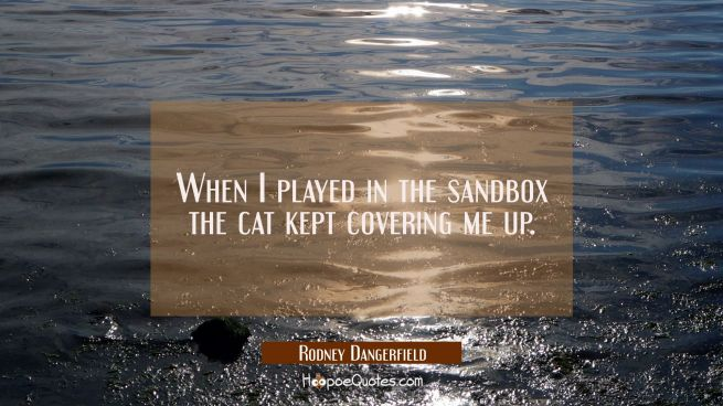 When I played in the sandbox the cat kept covering me up.