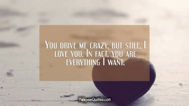 You drive me crazy, but still, I love you. In fact, you are everything I want. I Love You Quotes