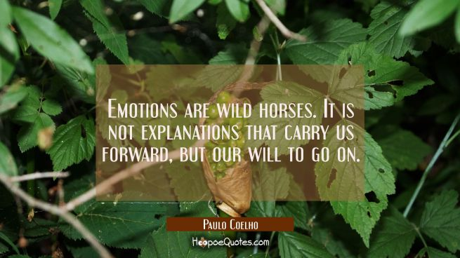 Emotions are wild horses. It is not explanations that carry us forward, but our will to go on.