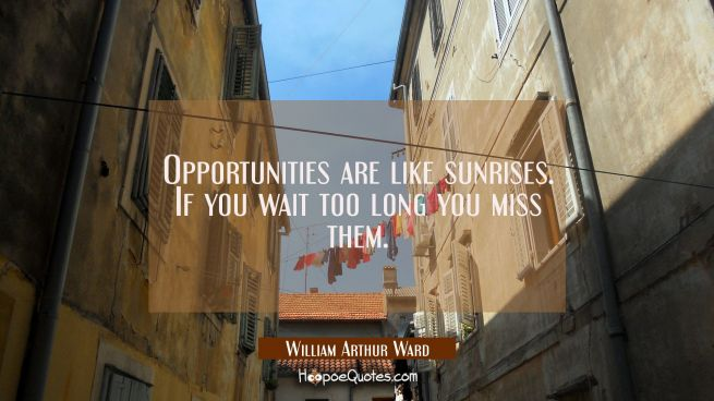 Opportunities are like sunrises. If you wait too long you miss them.