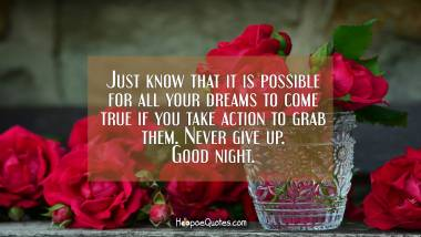 Just know that it is possible for all your dreams to come true if you take action to grab them. Never give up. Good night. Good Night Quotes