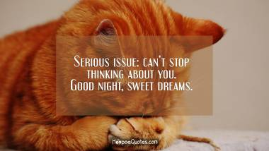 Serious issue: can't stop thinking about you. Good night, sweet dreams. Good Night Quotes