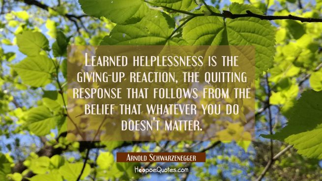 Learned helplessness is the giving-up reaction the quitting response that follows from the belief t