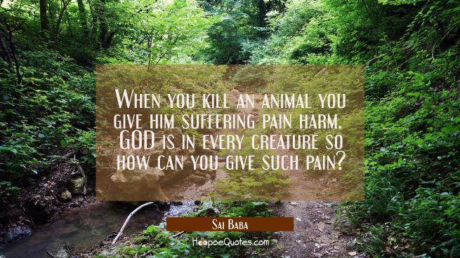 When you kill an animal you give him suffering pain harm. GOD is in every creature so how can you