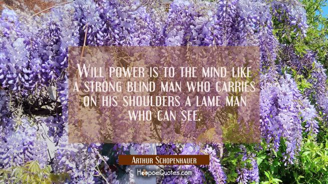 Will power is to the mind like a strong blind man who carries on his shoulders a lame man who can s