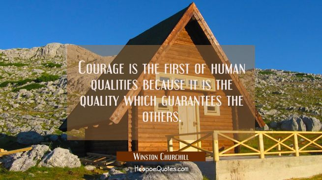 Courage is the first of human qualities because it is the quality which guarantees the others.