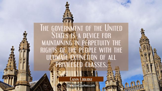 The government of the United States is a device for maintaining in perpetuity the rights of the peo
