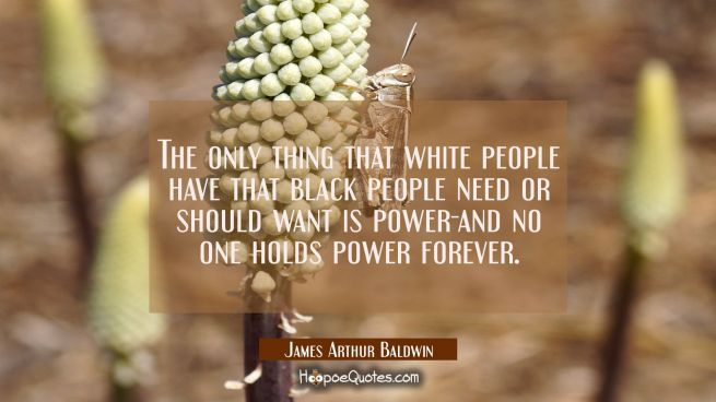 The only thing that white people have that black people need or should want is power-and no one hol