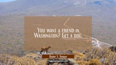 You want a friend in Washington? Get a dog. Harry S. Truman Quotes