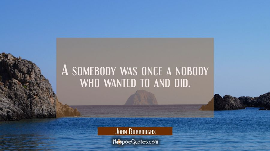A somebody was once a nobody who wanted to and did. John Burroughs Quotes