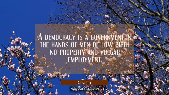 A democracy is a government in the hands of men of low birth no property and vulgar employment