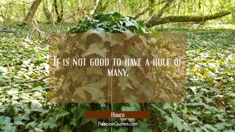 It is not good to have a rule of many. Homer Quotes