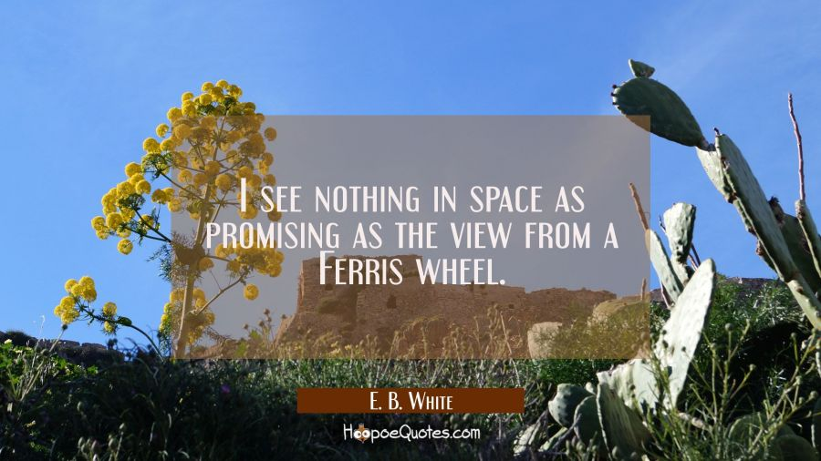 I see nothing in space as promising as the view from a Ferris wheel. E. B. White Quotes