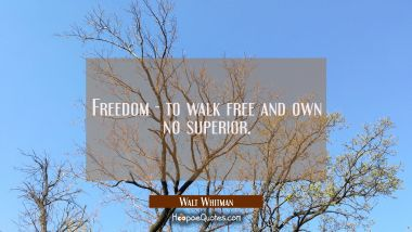 Freedom - to walk free and own no superior.