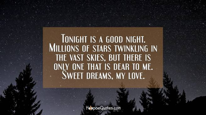 Tonight is a good night. Millions of stars twinkling in the vast skies, but there is only one that is dear to me. Sweet dreams, my love.