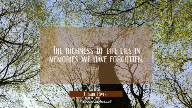 The richness of life lies in memories we have forgotten.