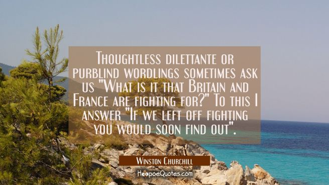 "Thoughtless dilettante or purblind wordlings sometimes ask us ""What is it that Britain and France a"