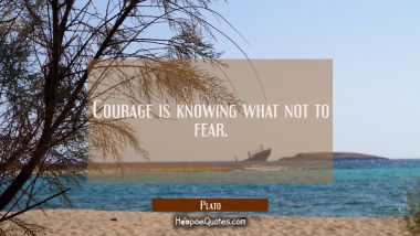 Courage is knowing what not to fear. Plato Quotes