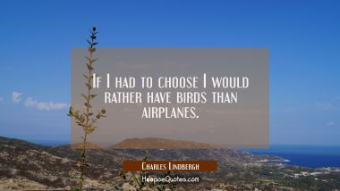 If I had to choose I would rather have birds than airplanes.