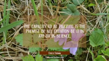 The capacity to be puzzled is the premise of all creation be it in art or in science.
