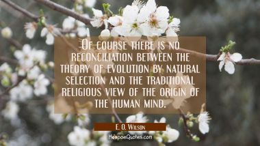 Of course there is no reconciliation between the theory of evolution by natural selection and the t