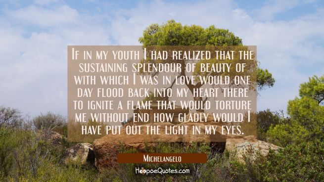 If in my youth I had realized that the sustaining splendour of beauty of with which I was in love w
