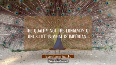 The quality not the longevity of one's life is what is important. Martin Luther King, Jr. Quotes