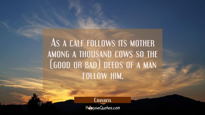 As a calf follows its mother among a thousand cows so the (good or bad) deeds of a man follow him.