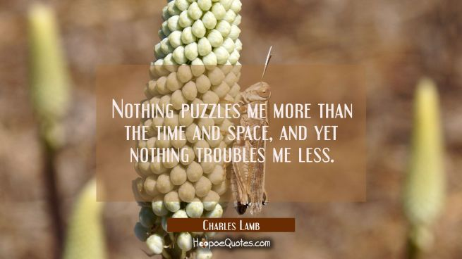 Nothing puzzles me more than the time and space, and yet nothing troubles me less.