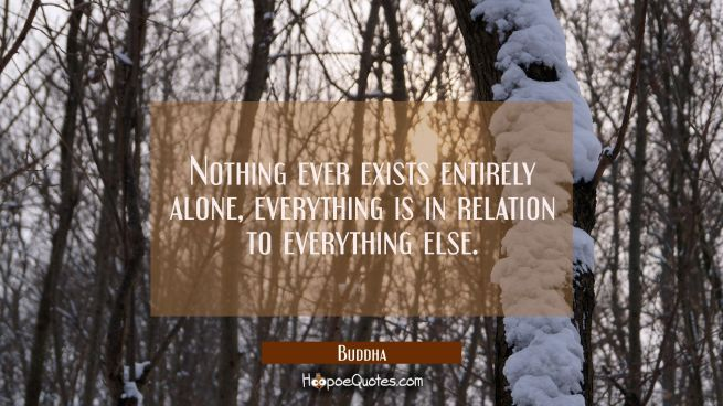 Nothing ever exists entirely alone everything is in relation to everything else.