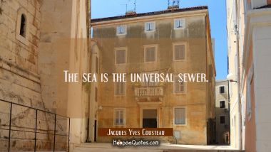 The sea is the universal sewer.