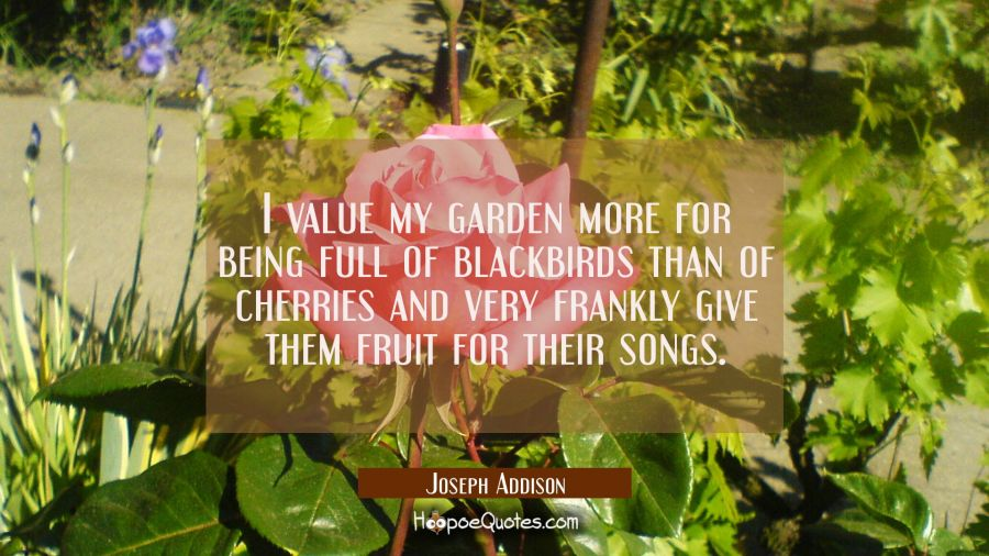 I value my garden more for being full of blackbirds than of cherries and very frankly give them fru Joseph Addison Quotes