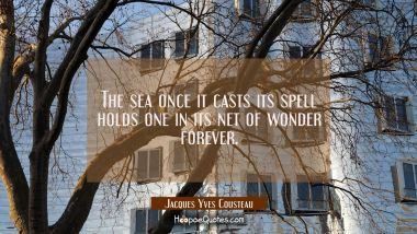 The sea once it casts its spell holds one in its net of wonder forever.