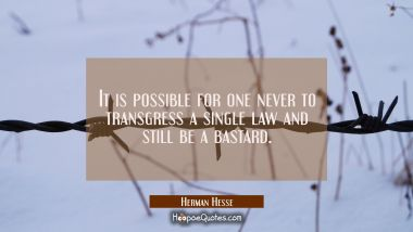 It is possible for one never to transgress a single law and still be a bastard. Herman Hesse Quotes
